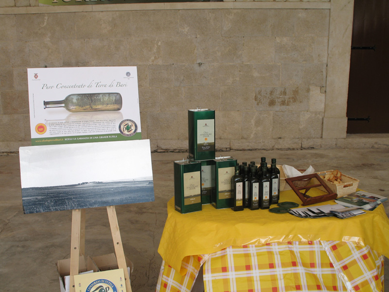 san martino in cantina 2010
